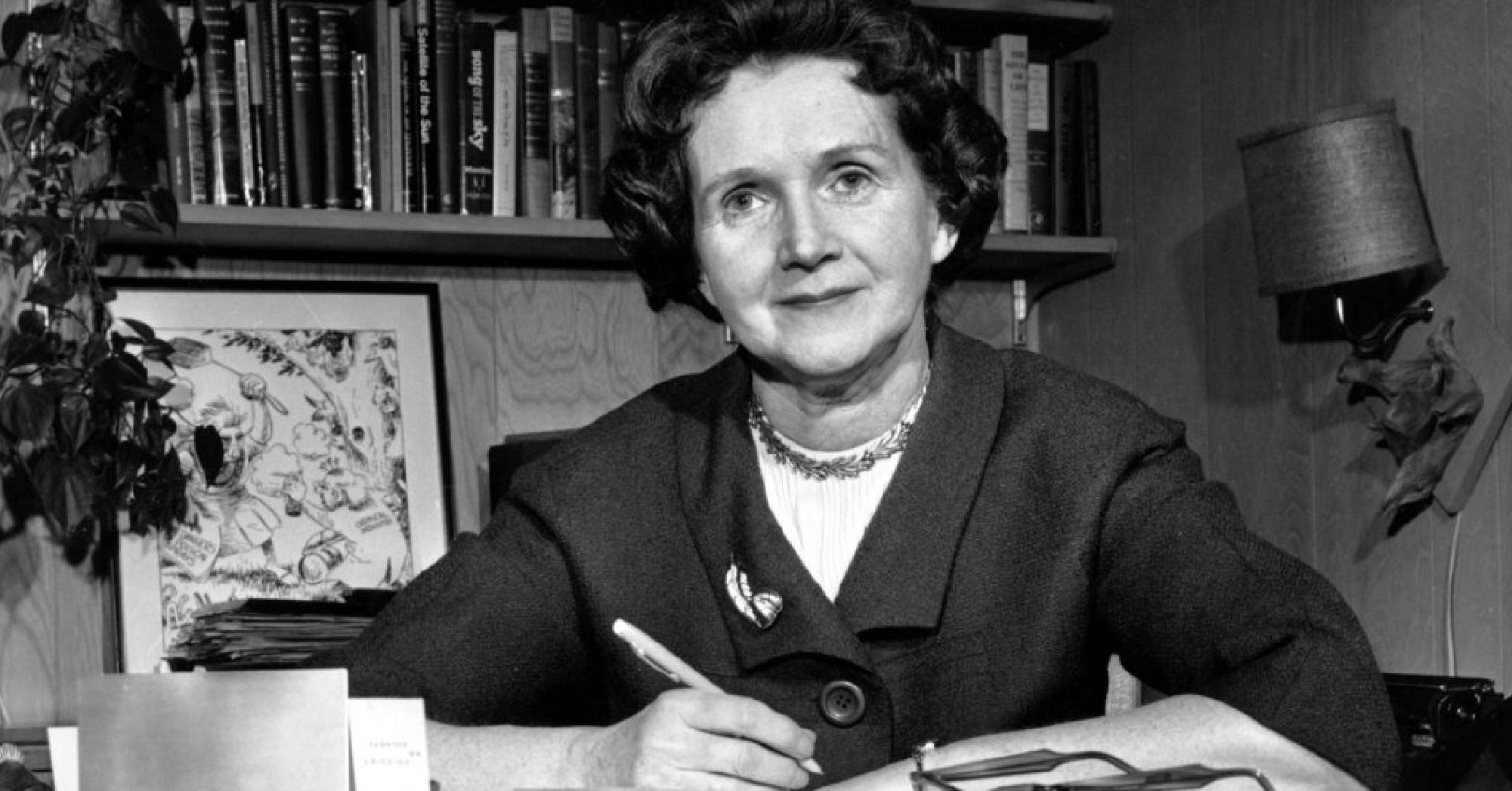 Der stumme Frühling von Rachel Carson